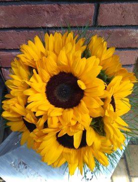 Čisto slnečnicová kytica