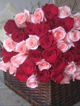 Romantická kytica ruží