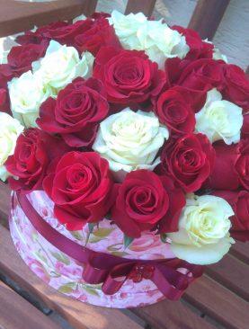 Box dvojfarebných ruží