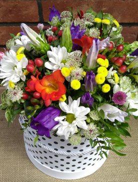 Letný pestrý box kvetov