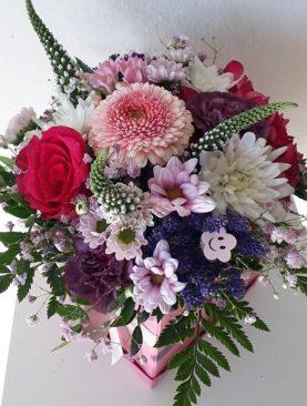 Ružovo-fialový miešaný box