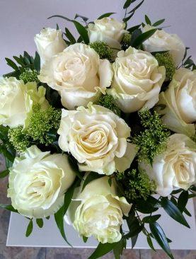 Box bielych ruží